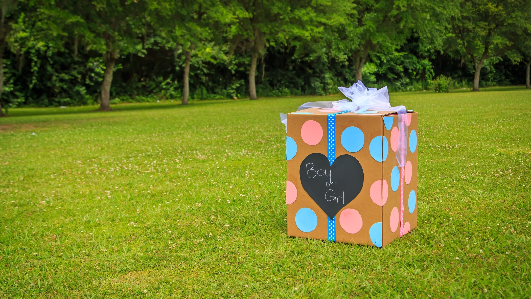 gender reveal gifts with lab grown diamonds