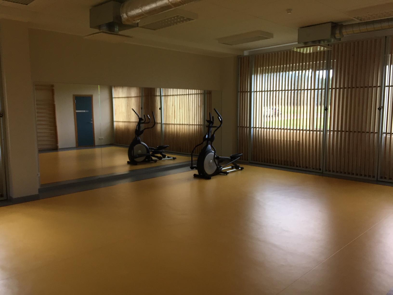 Estonia 7 - gym.jpg