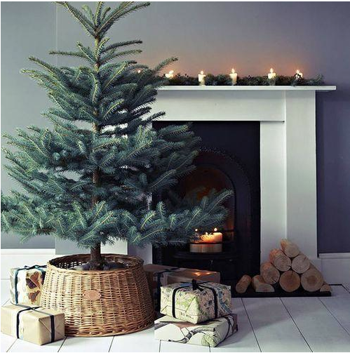 Photo:  Christmas Winter
