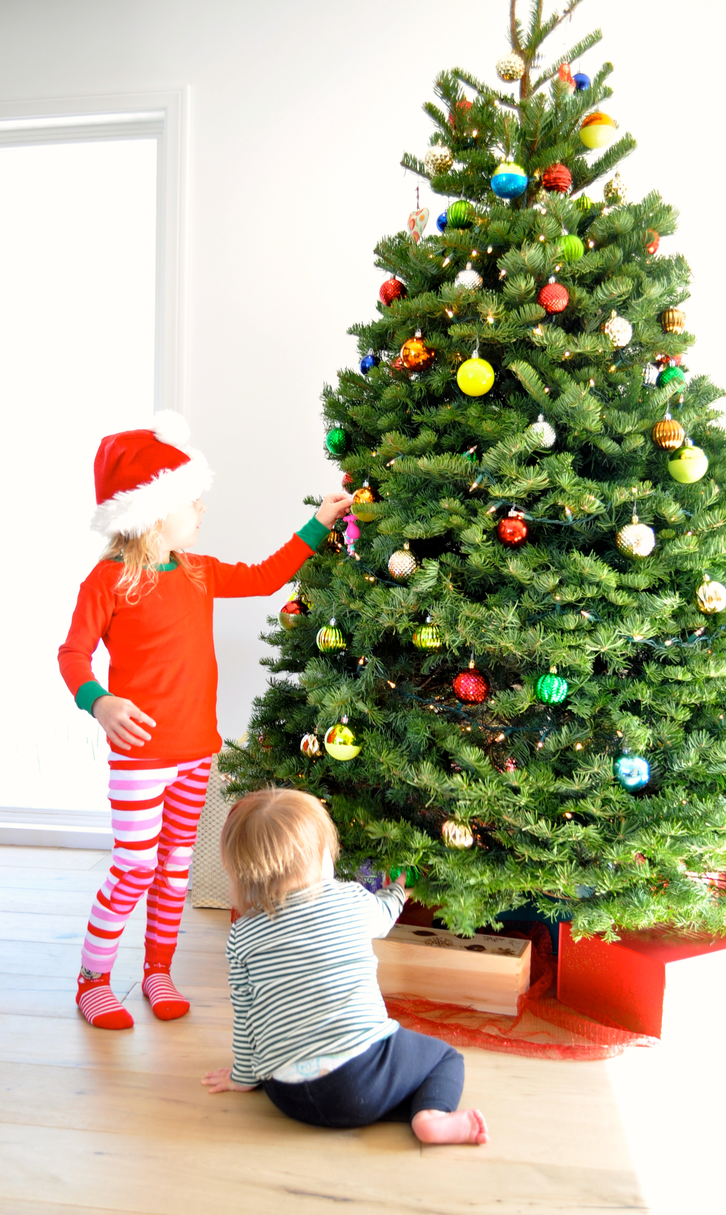Poppy Putting her Poppy Troll Ornament on the tree, while Pixie tries to help too! -