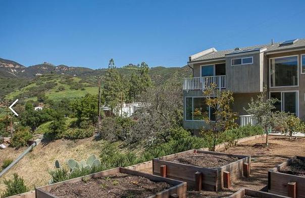 Backyard- before