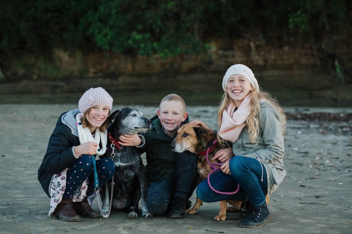 Pet photo shoot with dog-Emily Chalk Auckland.jpg