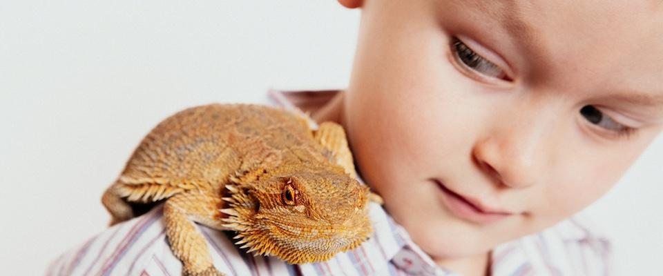 Emily Chalk-family pet photo session-Auckland.jpg