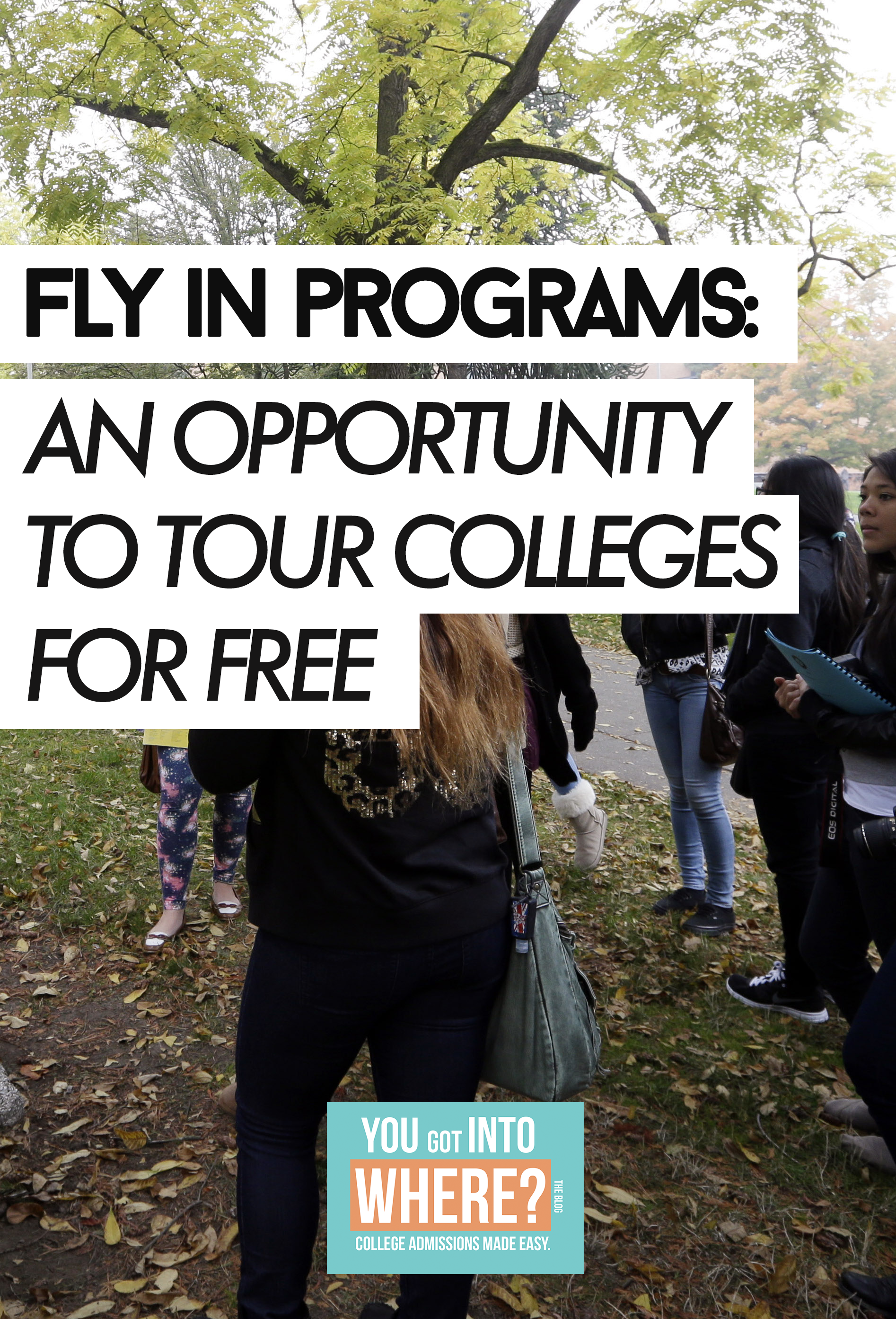 all-about-fly-in-programs.png