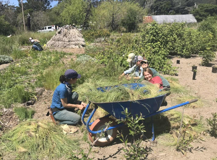 Volunteer workday at Pie Ranch. Photo courtesy Nancy Vail.