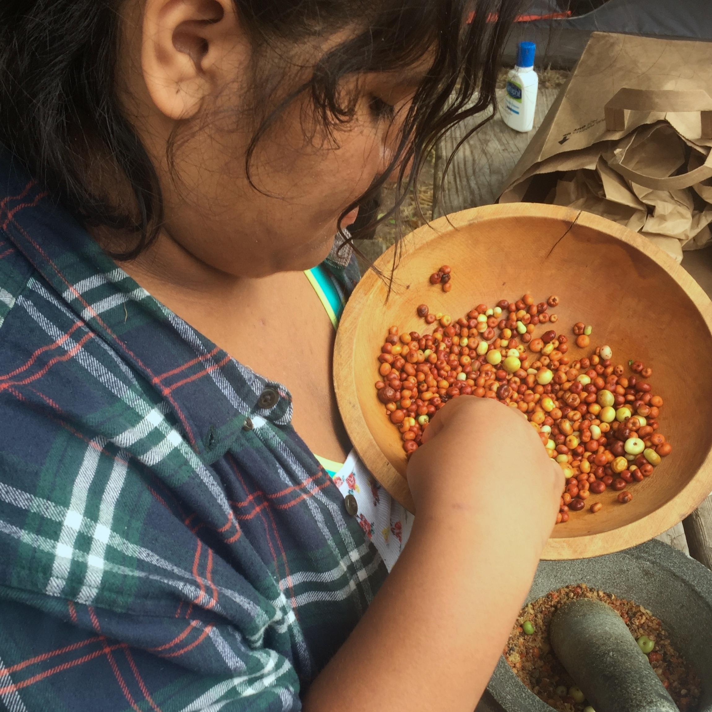 Author, Laylah Luna-Carrisosa processing manzanita berries to make manzanita cider