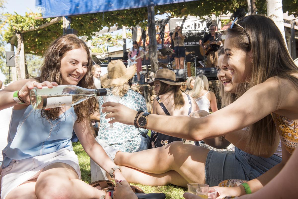 Festivals & Events - at Piccolo Family Farms