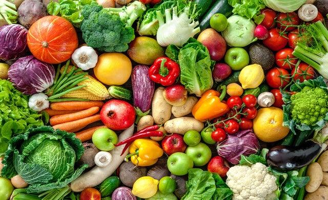 Good Food Startup Manual -