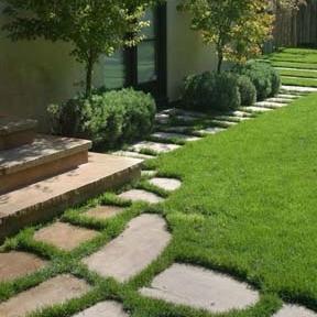 step_lawn.jpg