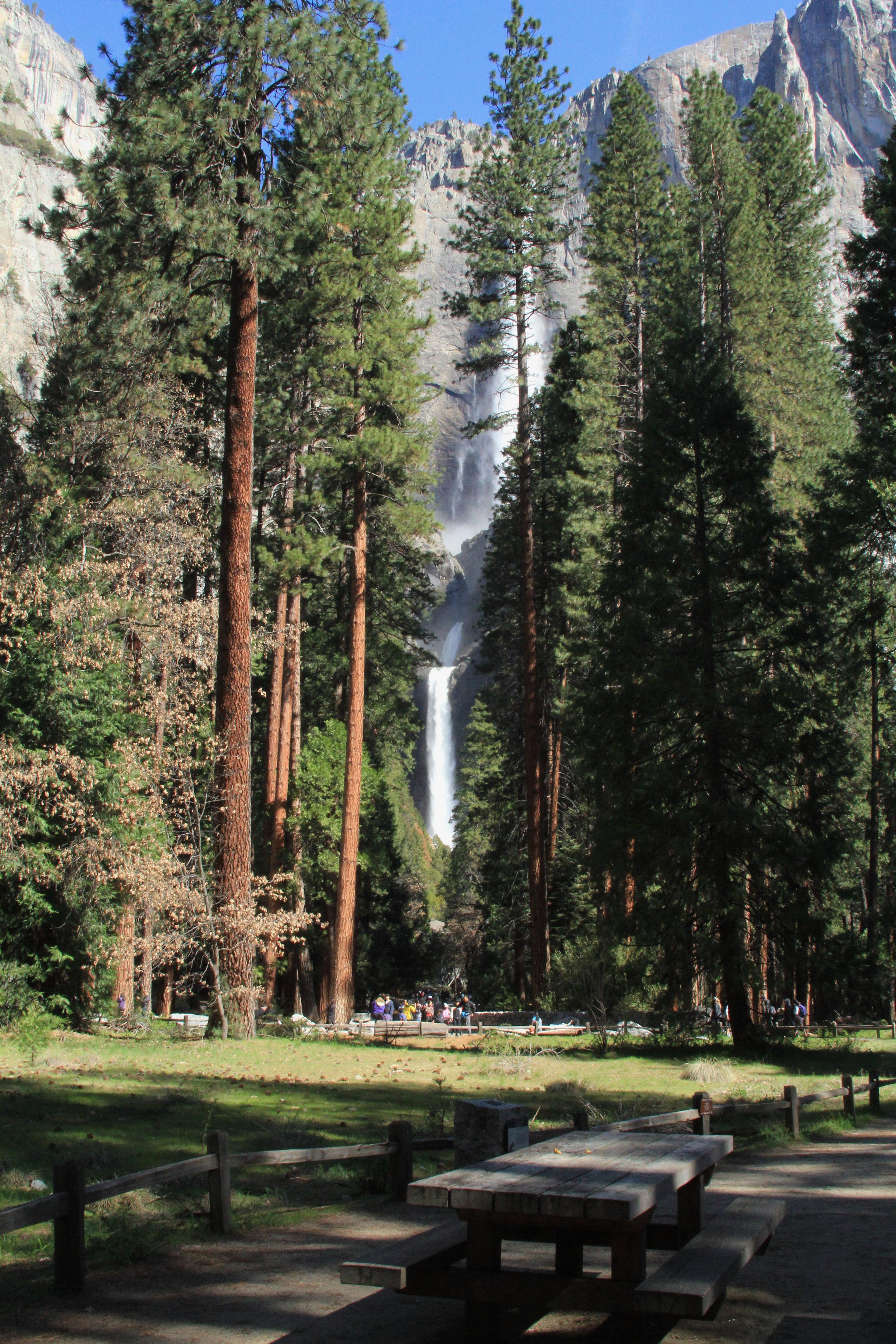 Yosemite Falls - 5.jpg