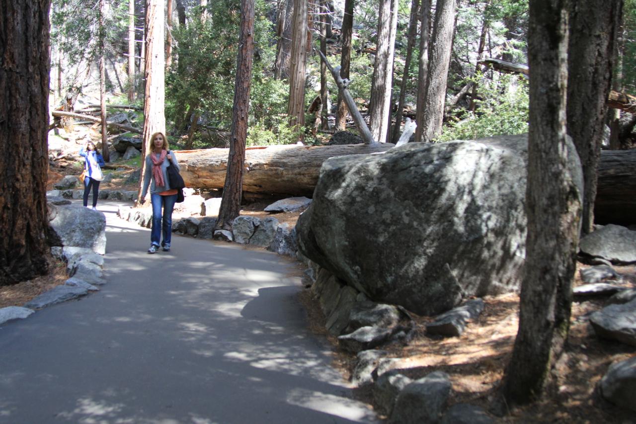 Yosemite Falls - 6 (1).jpg
