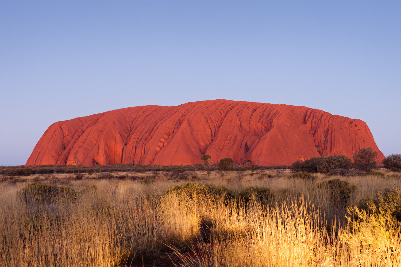 Central Australia - Bush