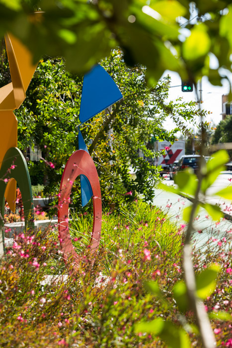 Malop Street - Lush, green, playful new street-scaping in one of Geelong's main shopping streets. Photographed for Outlines Landscape Architecture.