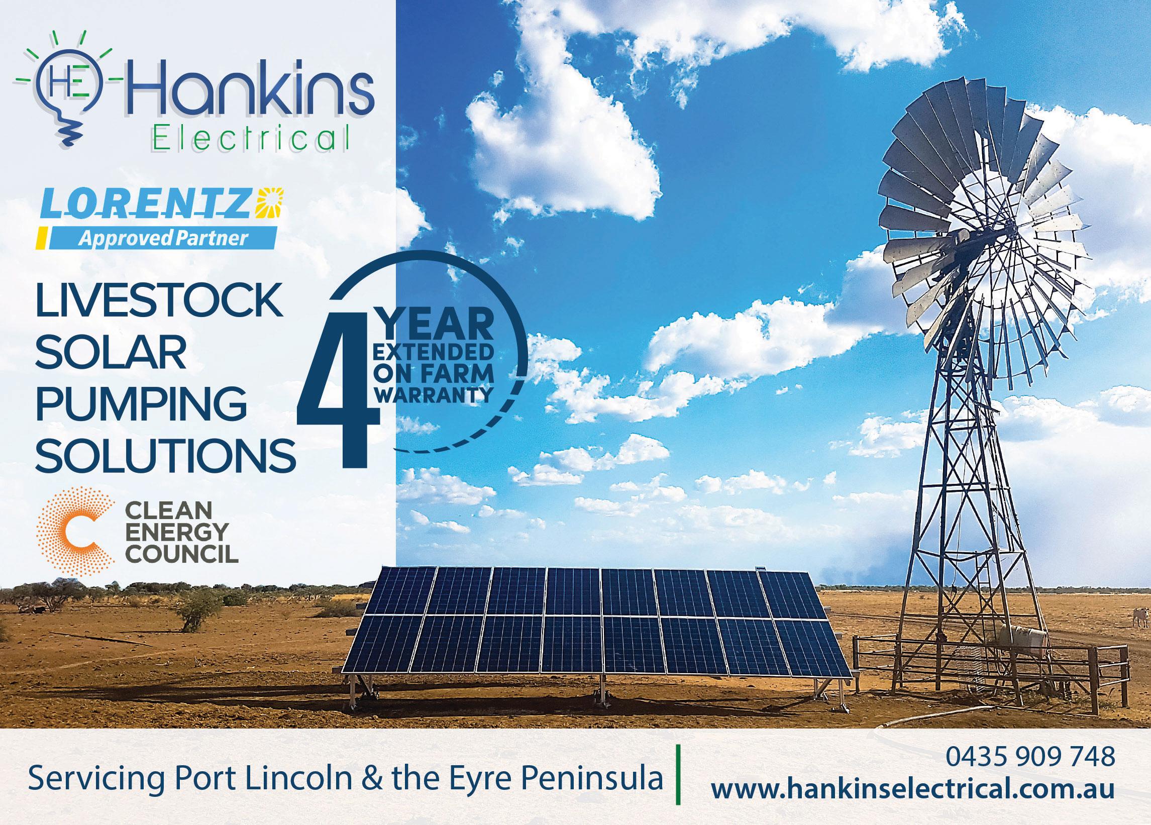 Lorentz Livestock Solar Pumps