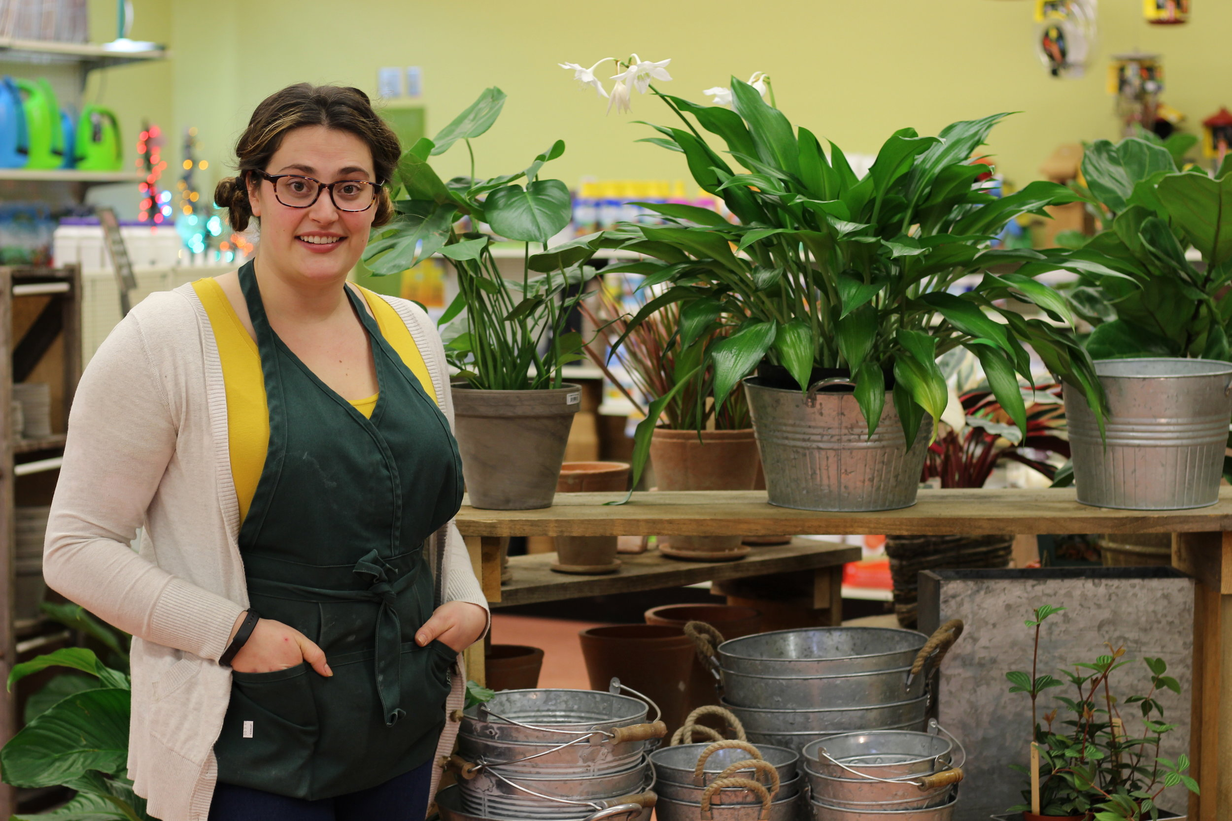 Maddy Westby, the always helpful houseplant specialist at  Leitner's .
