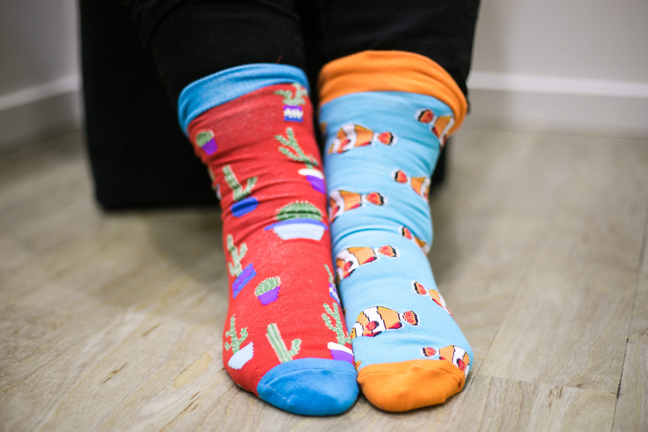 winner of socks-3.jpg