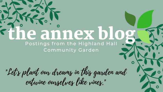Annex blog.jpg