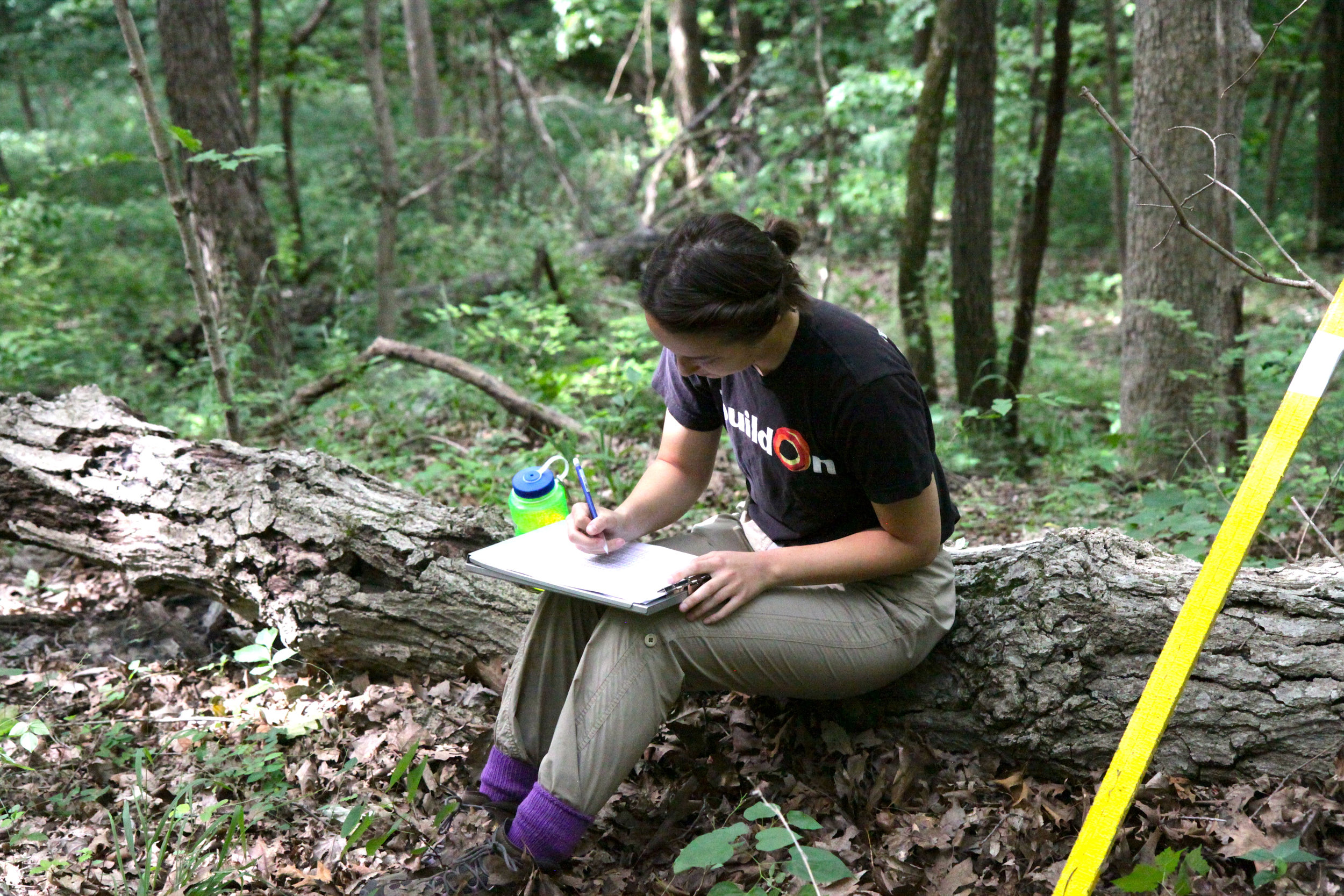 """It encouraged me to think outside of the box as far as possibilities involving ecology/environmental science careers. I realize that while academia is still an option for me, I could also consider going the route of some of the lecturers and working for botanical gardens or a number of other places, or going into education as I really enjoyed the tiered mentorship."""