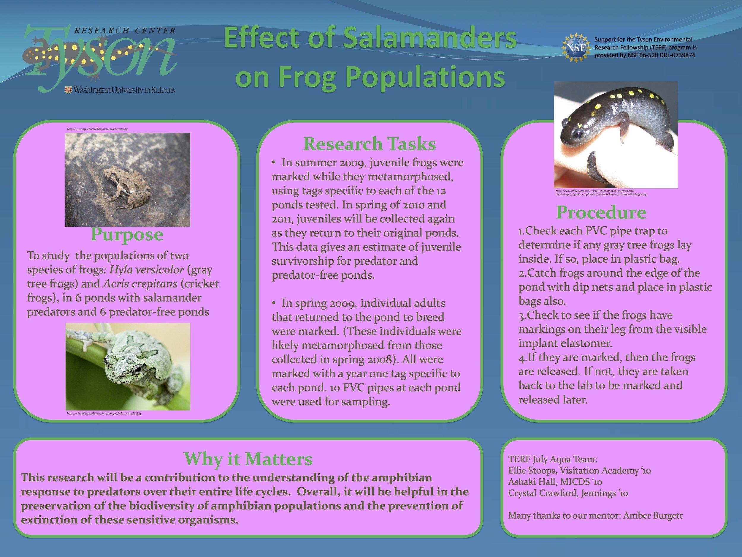 TERF 2009 Amphibian poster.jpg