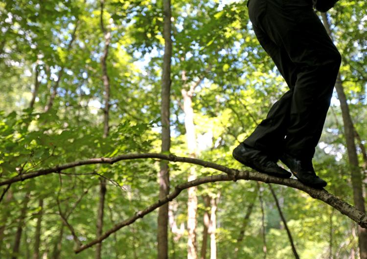 """""""We feel clear-headed and centered after spending time in the forest,"""" said artist-in-residence David Marchant, who tests his balance on a small limb on Wednesday, July 31, 2019, at Tyson Research Center. Marchant, a professor of the practice in dance at Washington University, spent five weeks conducting research in somatic ecology and exploring movement in natural landscapes. Photo by Laurie Skrivan,  lskrivan@post-dispatch.com"""
