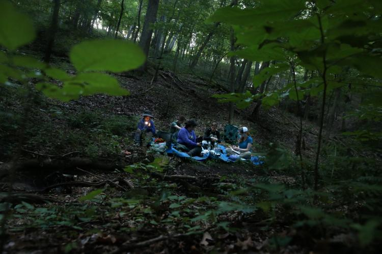 Tick & Wildlife research fellows working with Solny Adalsteinsson, PhD, wait in the solace of the forest for their next timed interval to check for any netted birds on Wednesday, July 31, 2019, at Tyson Research Center. The team is researching how controlled burns affect tick and wildlife abundance, diversity and behavior by netting birds. Photo by Laurie Skrivan,  lskrivan@post-dispatch.com