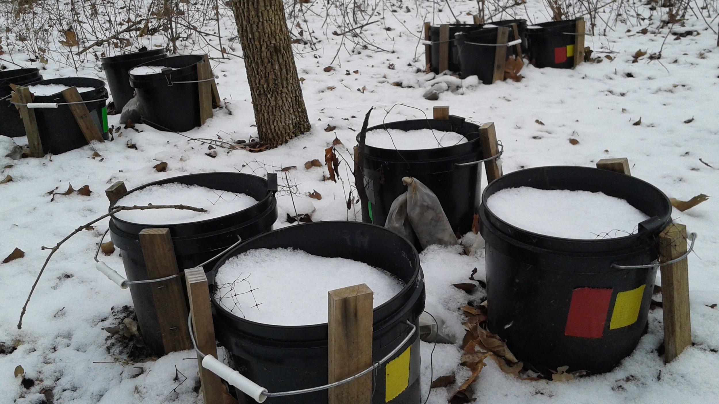 winter bucket.jpg