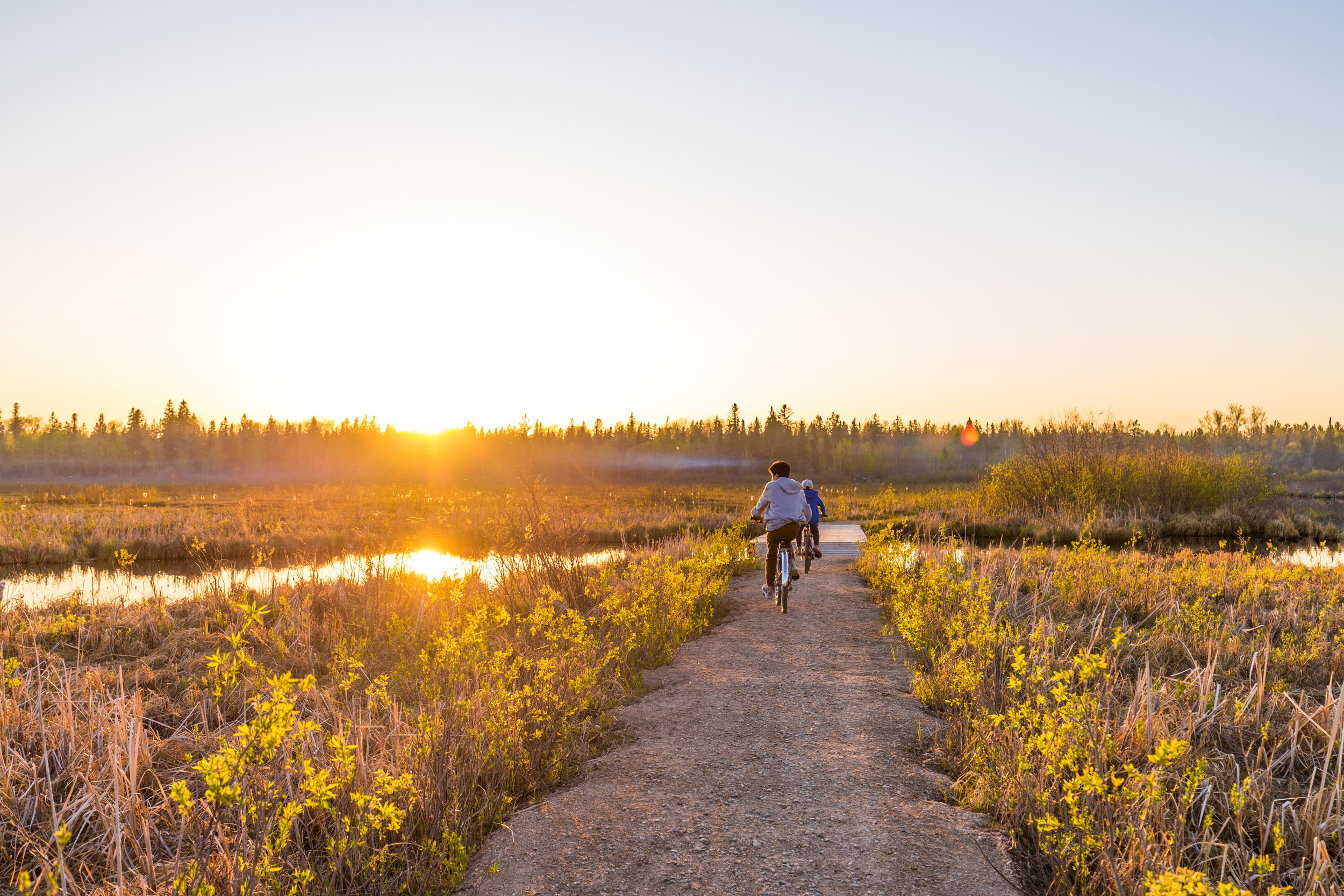 Photograph of the Marsh Trail by local cottager Breanne Hearsum of  Hearsum Photography