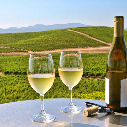 Napa Wine Tour Limo.jpg