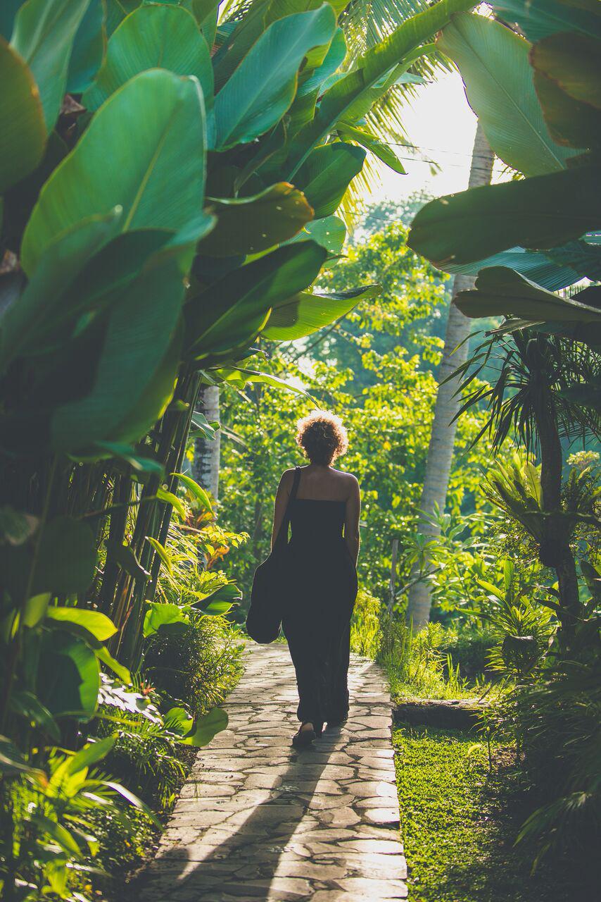 shala entrance jungle.jpg