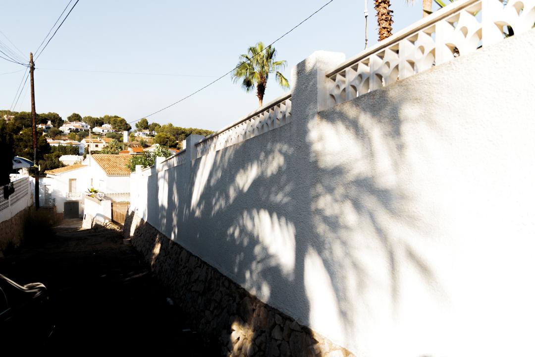 Shadows of a palm tree, Spain