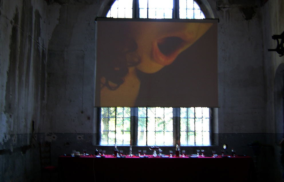 Atto Muto | When Art meets Porn | curated by Virginia Sommadossi | Centrale di Fies | Italy | 2008