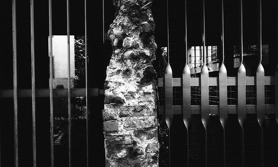 bibevivas-08.jpg