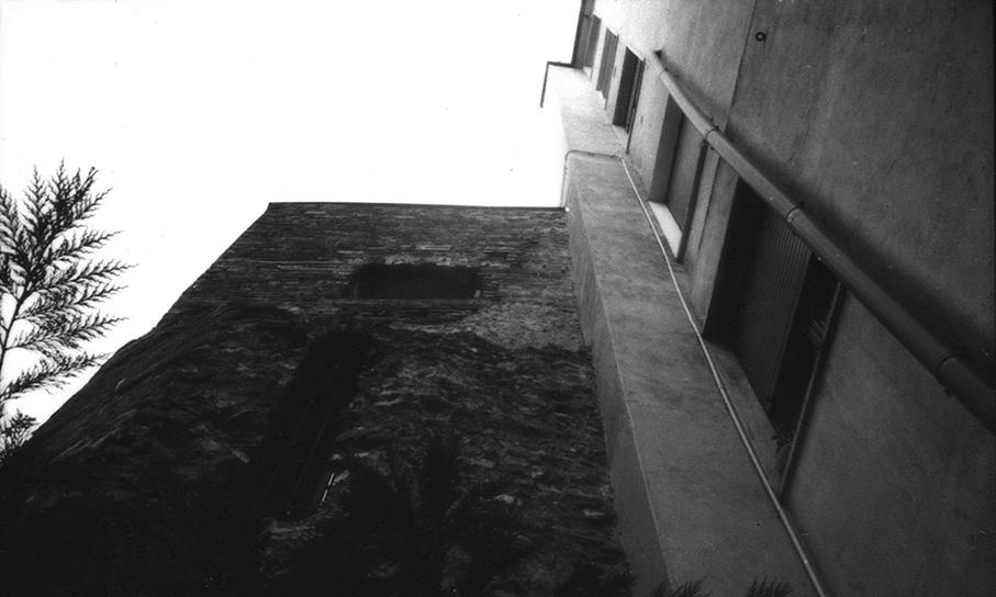 bibevivas-09.jpg