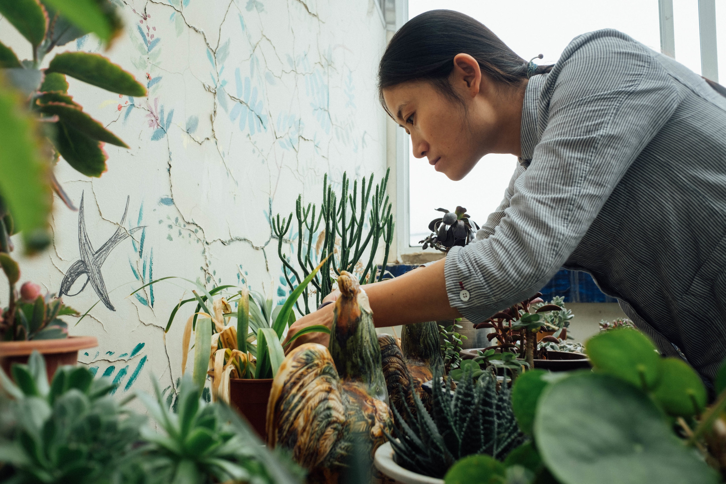 Chen looking after the plants in the back of the Green Watershed rooftop.