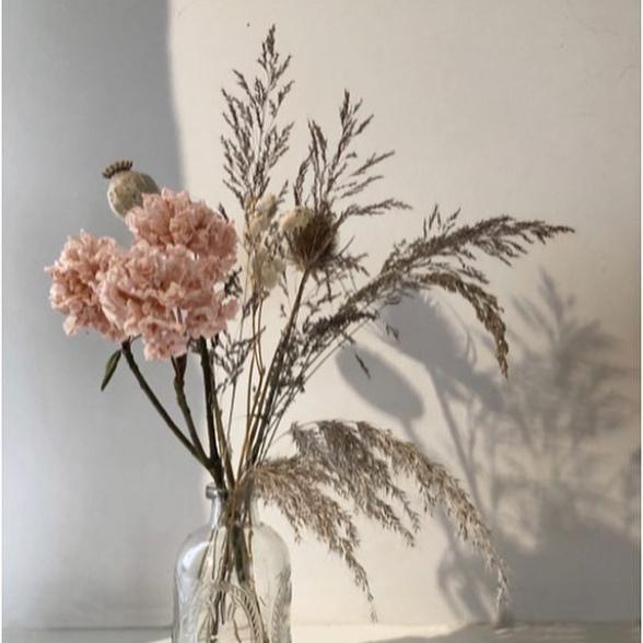jeanne-paris-fleurs-sechees-ecolos