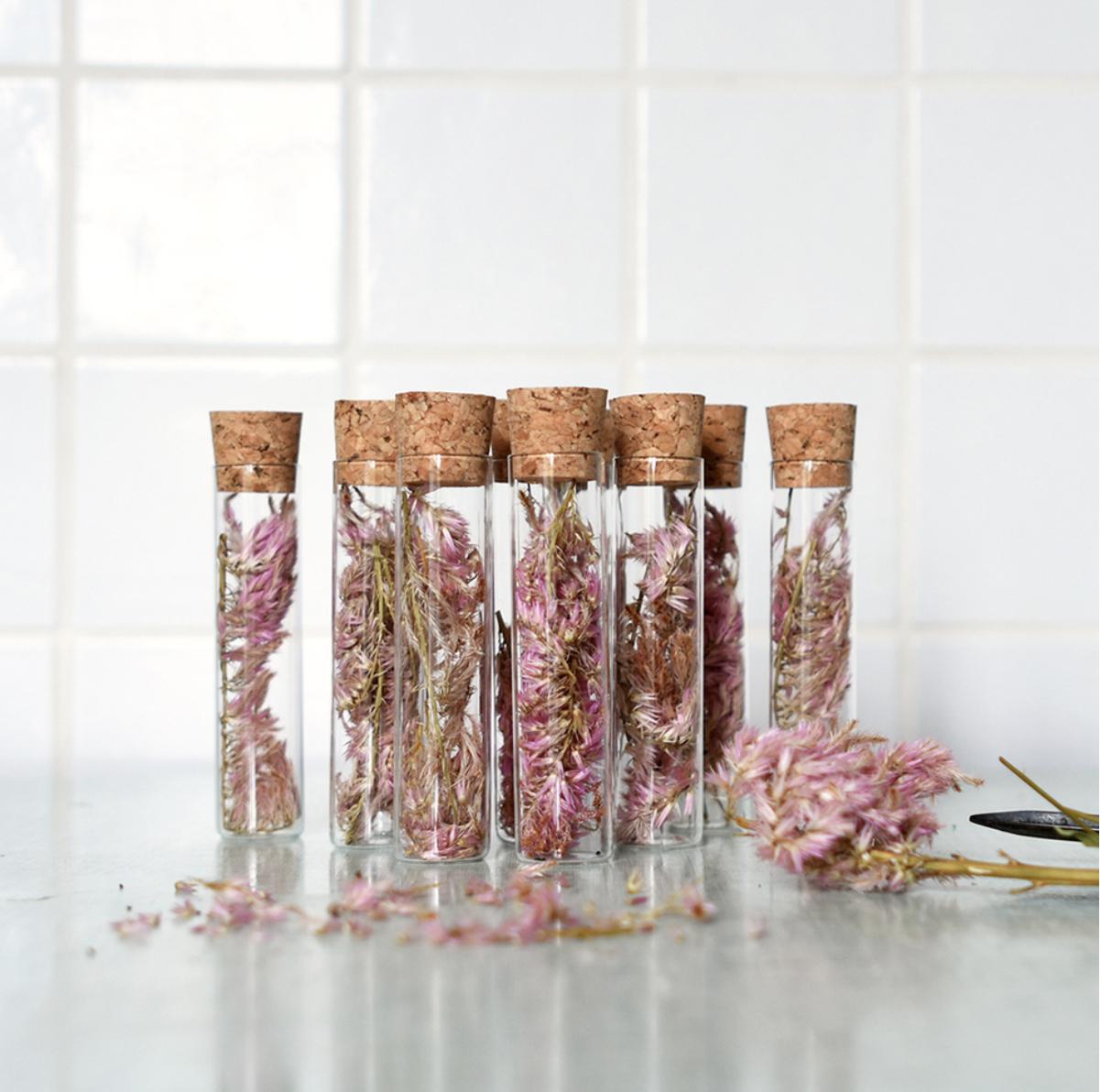 fiole-cueillettes-julie-beal-fleurs-sechees