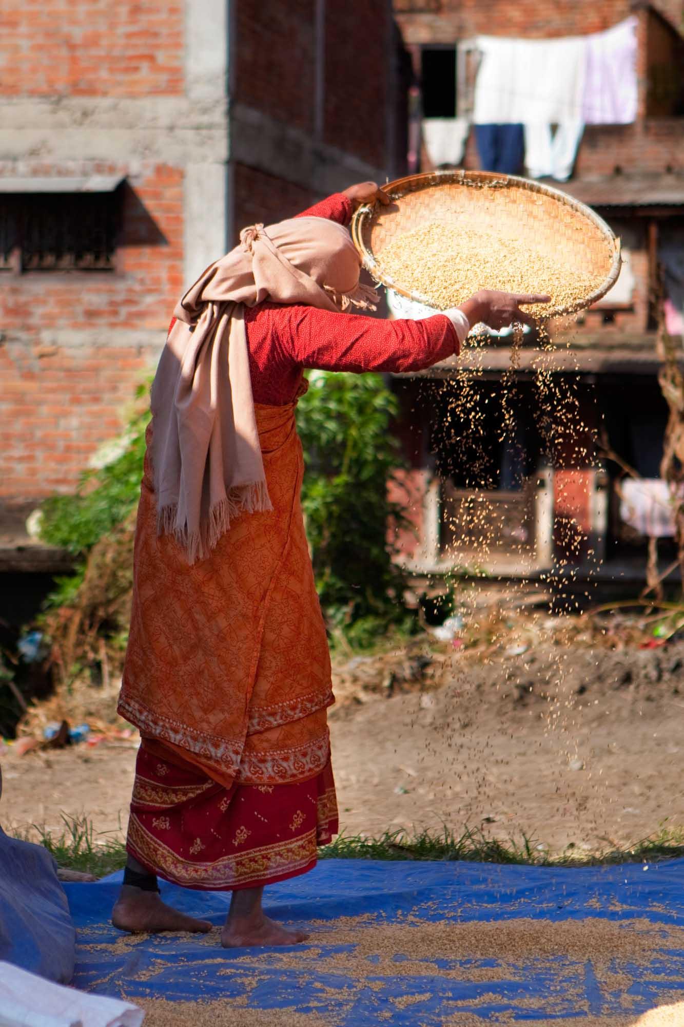 Kathmandu Grain Sifting.jpg