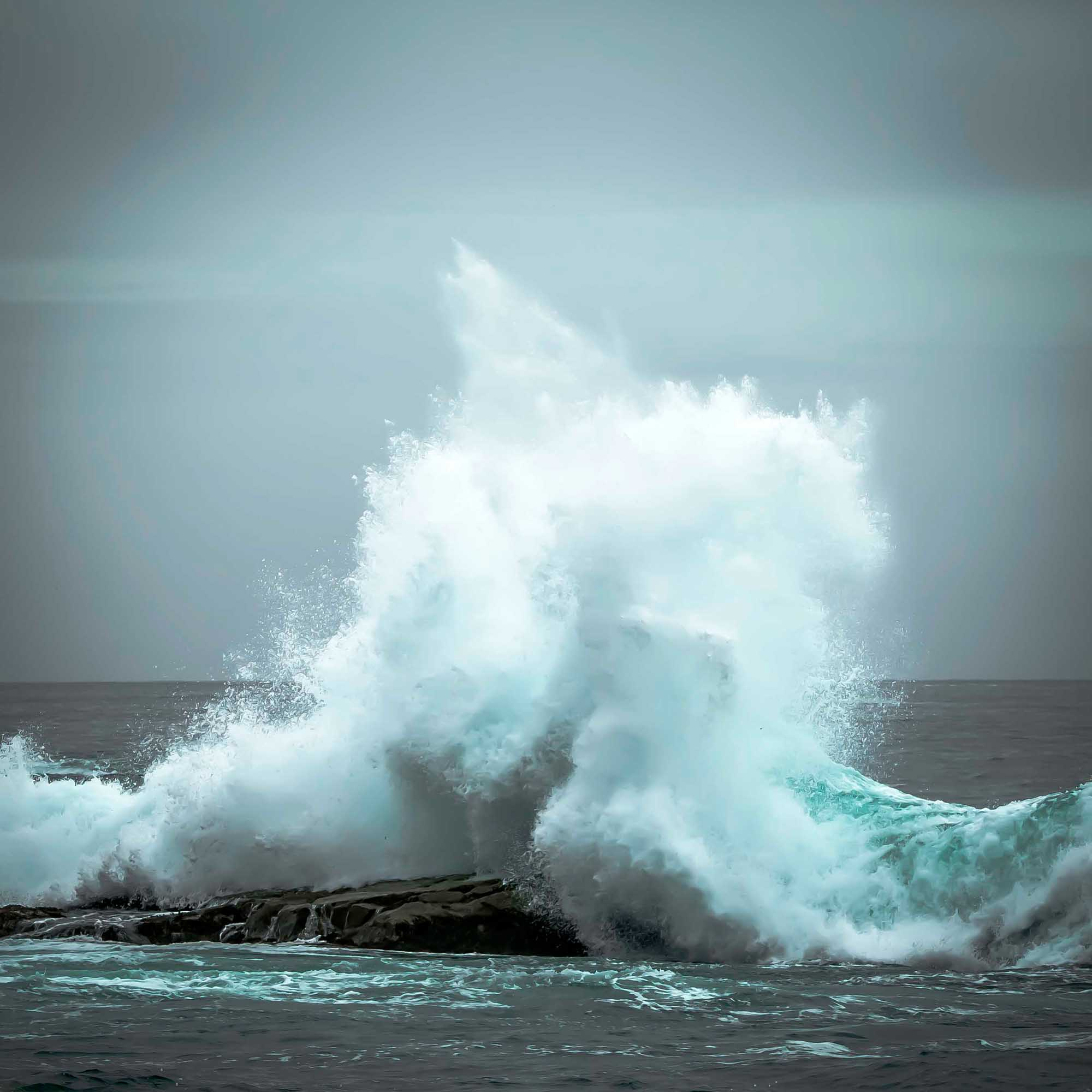 14 Wave1.jpg