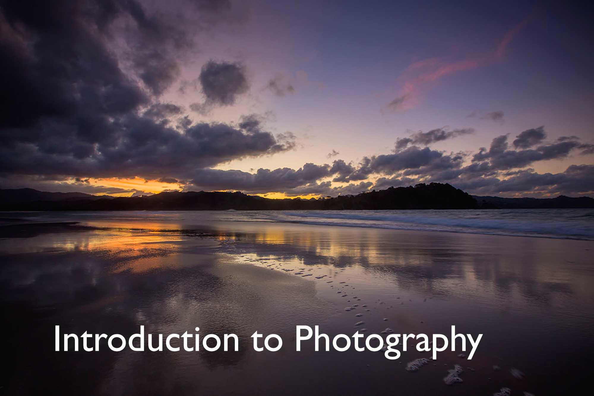 Matarangi Sunset Landscape.jpg