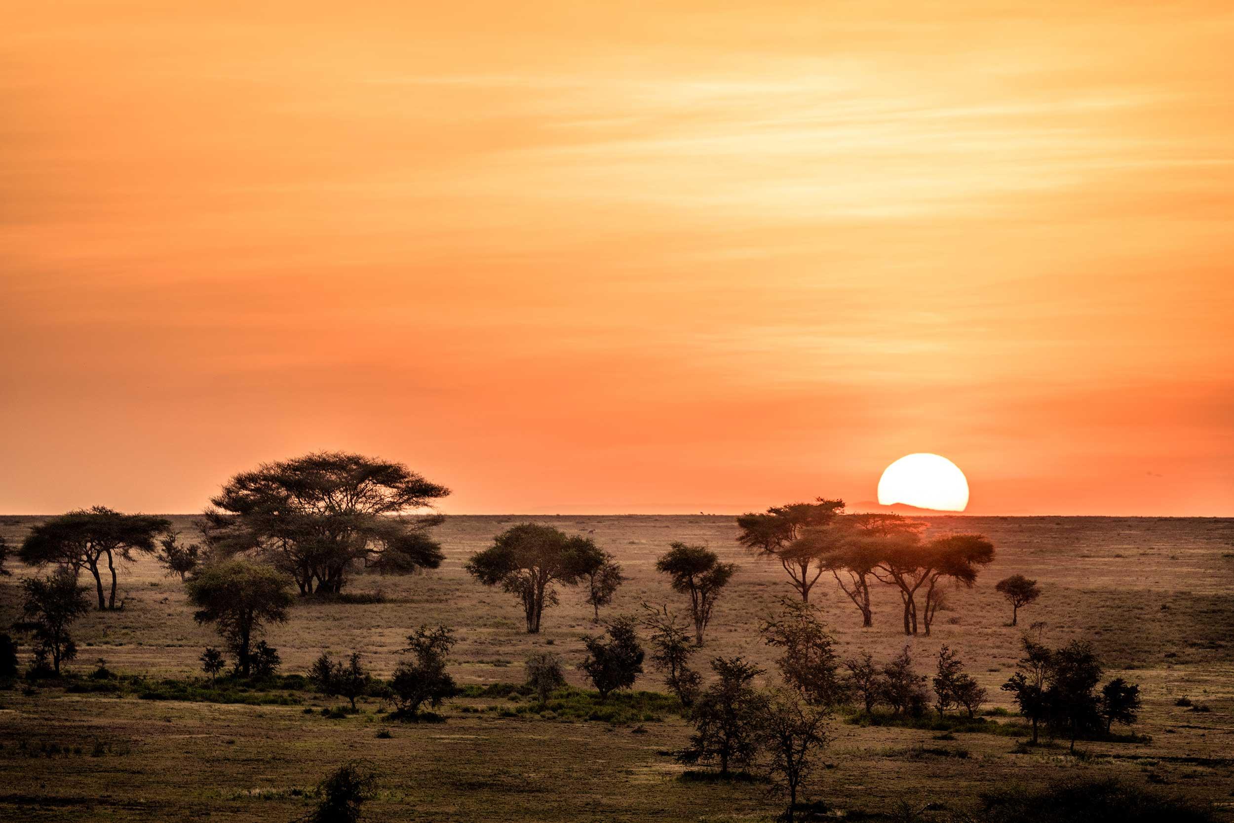 UNTOLD-Journal-Tanzania-017.jpg