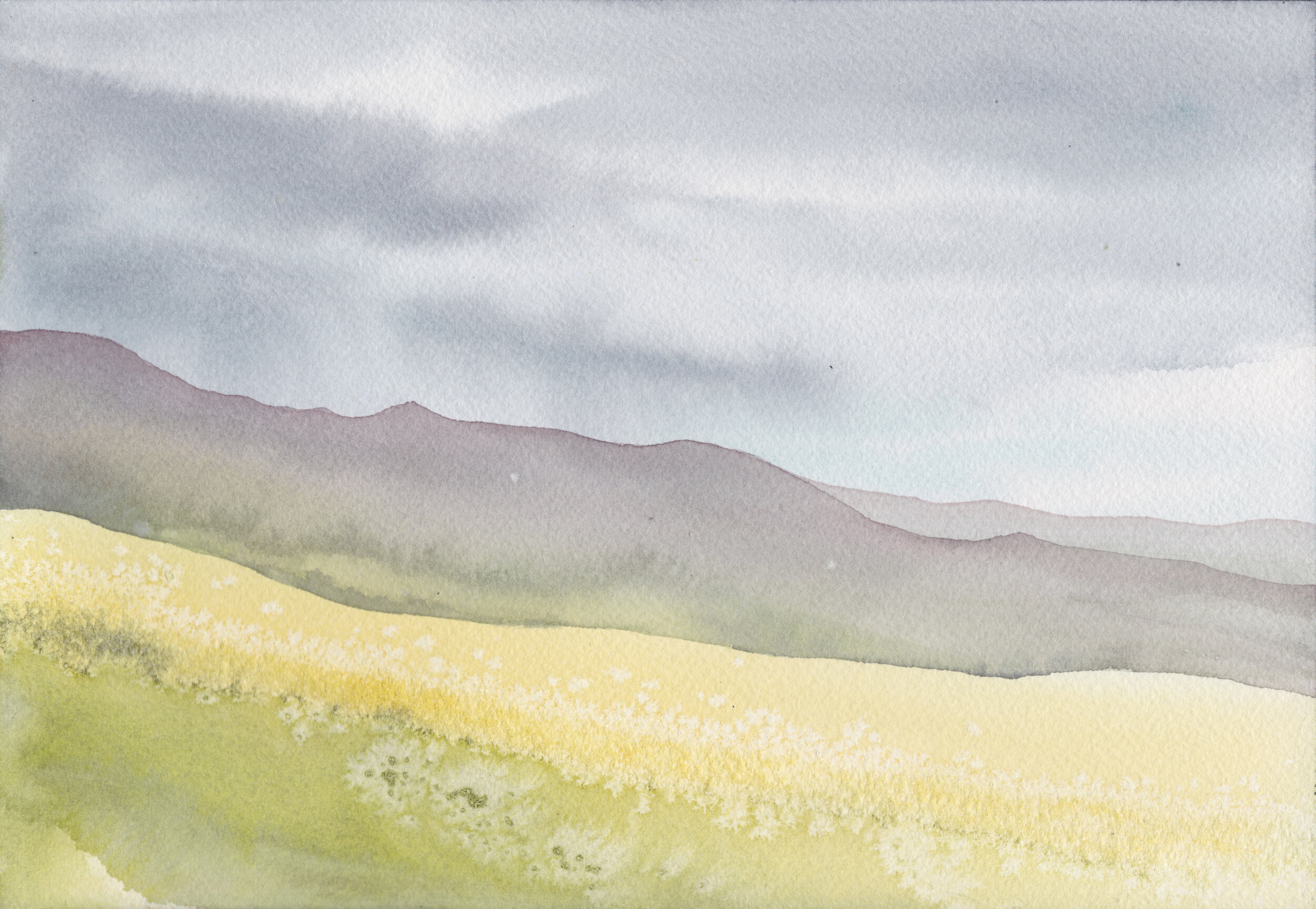 """""""Campos de trigo 2""""  Tamaño Lámina: 18 x 26 cms. Valor: $90.000  DISPONIBLE"""