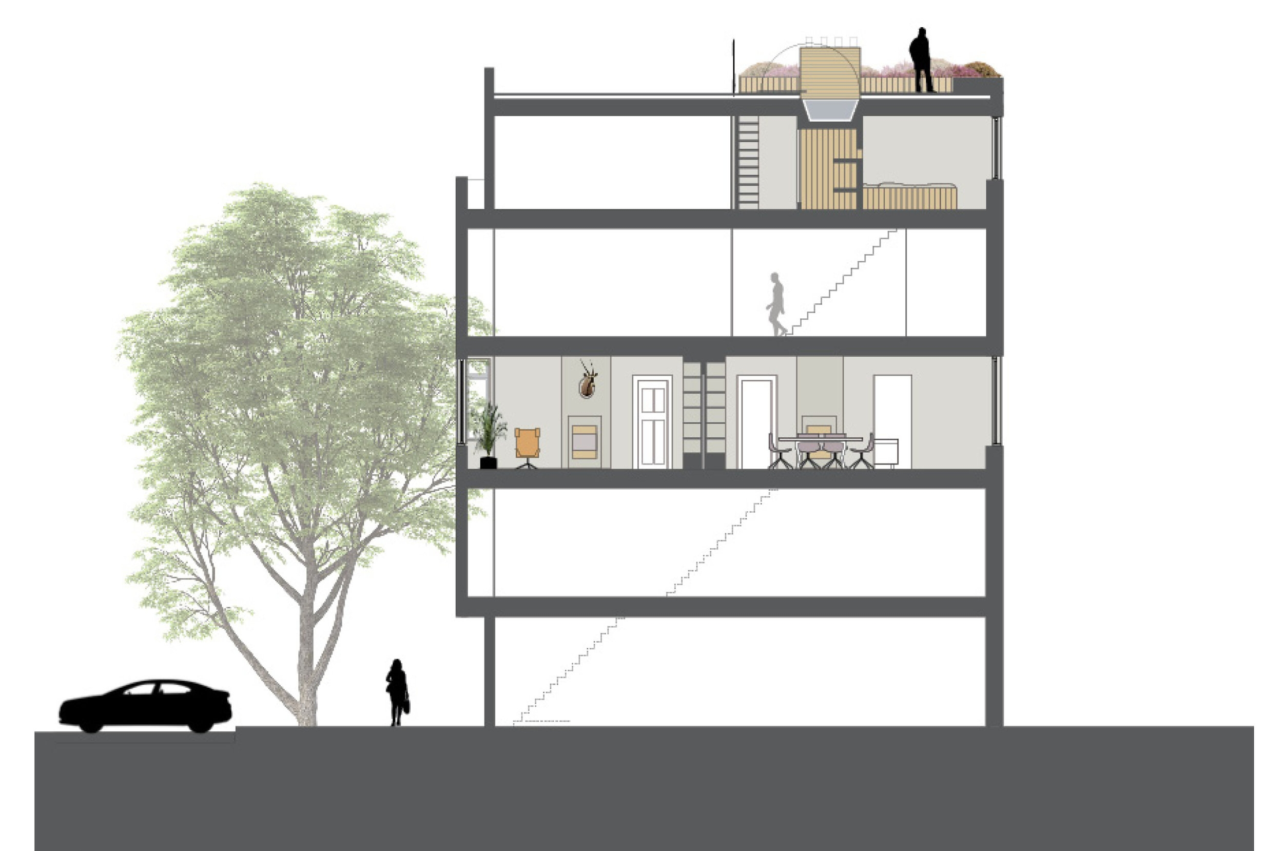 section of the apartment, loft and roof terrace