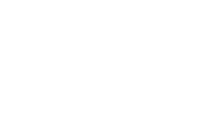 AOTA Logo-white.png