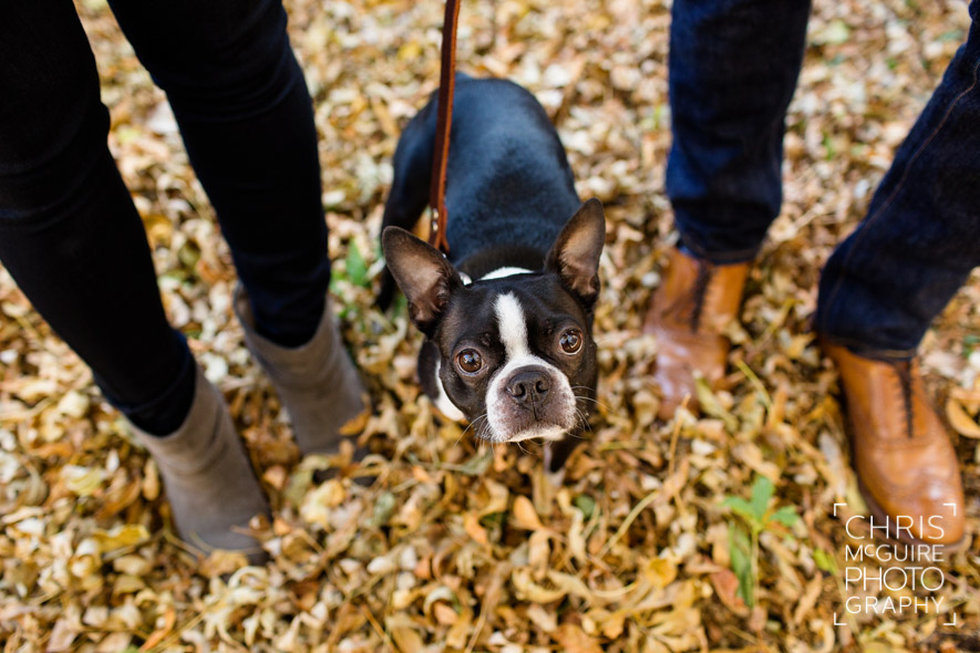 engagement couple shoes with dog in fall leaves