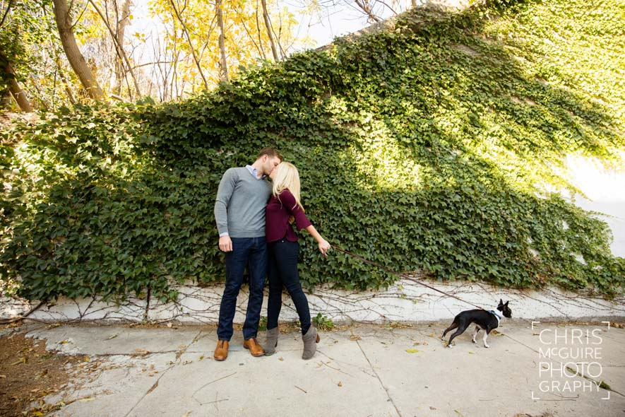 dog pulling couple kissing in Chicago