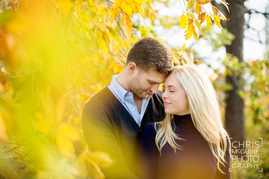 fall engagement in chicago illinois