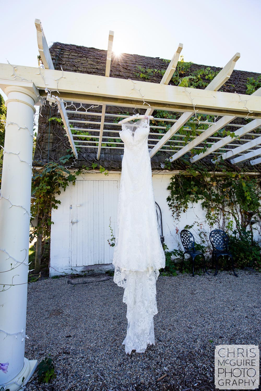 Central Illinois Wedding Dress