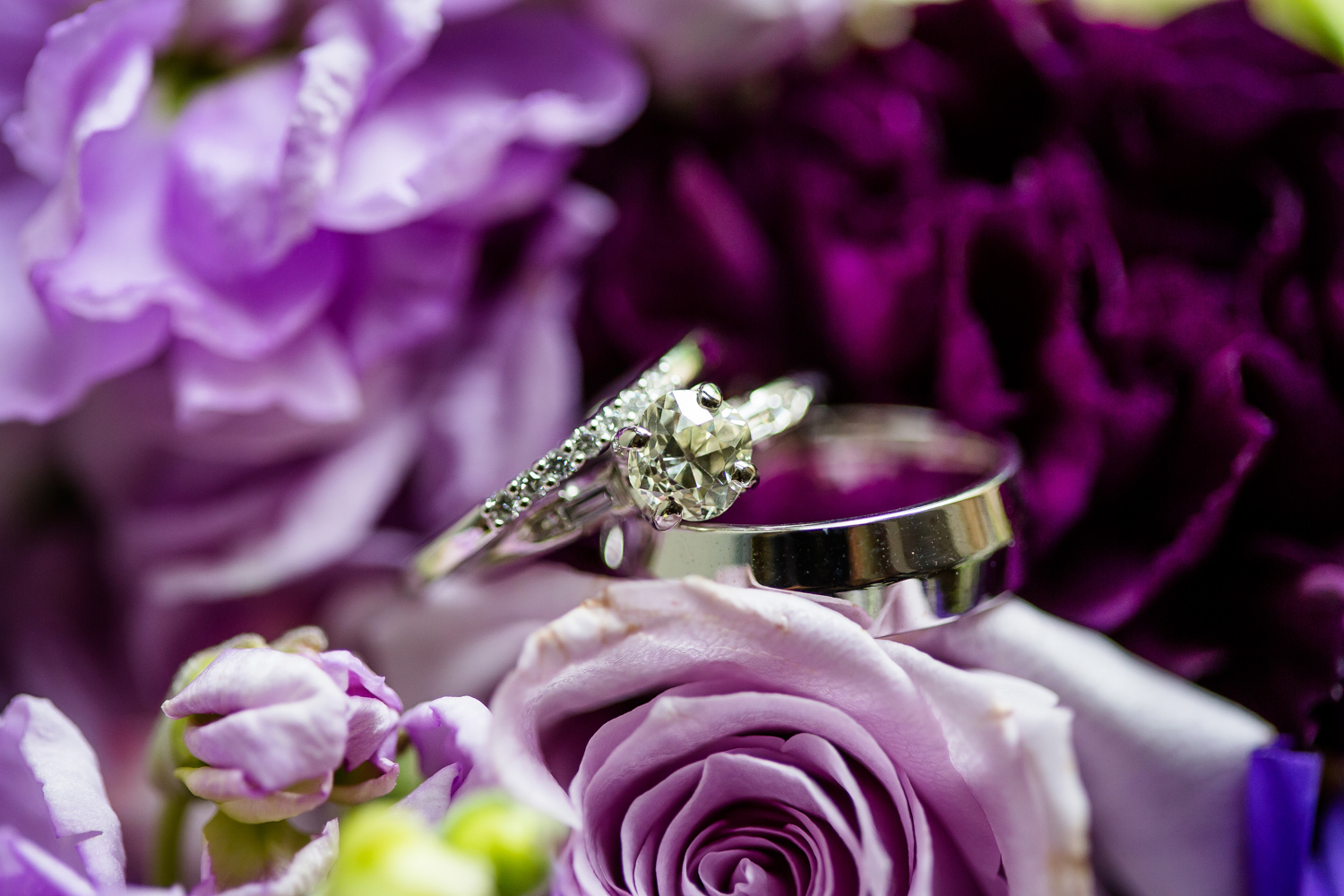 Wedding rings on purple bouquet
