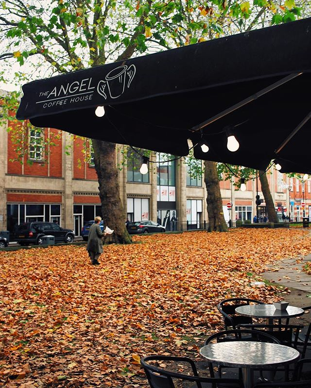 And all at once Summer collapsed into Autumn // our new carpet courtesy of those flamboyant Plane Trees outside 🔥 // • • • • • • #angelcoffee #angelcoffeehouse #lincoln #lincsuk #whatsonlincoln #lovelincoln #wearelincoln #JustGoShoot #InstaGoodMyPhoto #InstaPhoto #PicOfTheDay #PhotoOfTheDay #Photography #iPhoneography #500px #PictureOfTheDay #Camera #Photoshop #Instadaily #Igers #Sunset #Cityscape #HDR #Instafocus #Igworldclub #Visuals #Aesthetics #TravellingThroughTheWorld #Wanderlust