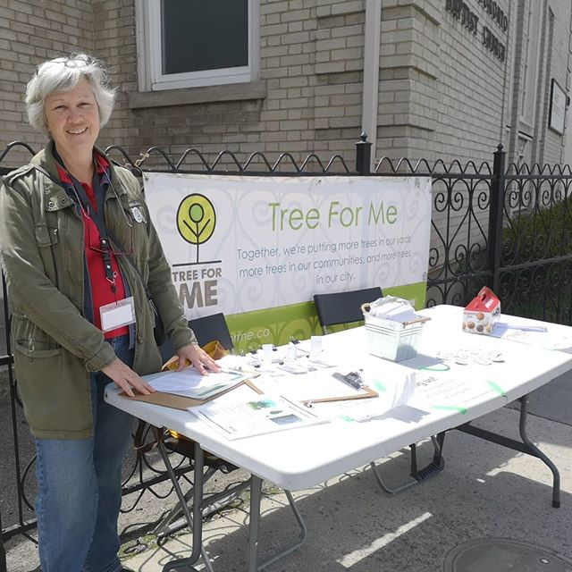 A familiar face volunteering at the @green13toronto event. Thank you @sarahedoucette for your help and support!! #treeforme #toronto #torontotrees #totrees